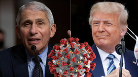 Anthony Fauci a Donald Trump.