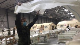 Armáda na twitteru zveřejnila nové fotografie z polní nemocnice v Letňanech. Vojáci připravují lůžka a stany.