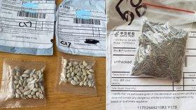 Lidem po celém světě přicházejí z Číny podivná semínka. Dostala se už i do Česka.