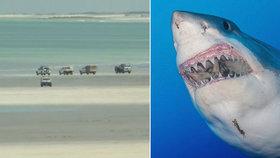 Žralok zabil v Západní Austrálii člověka.