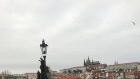 Pražané se v neděli 22. listopadu nedrželi doma a shlukovali se v centru. Podle redaktora Blesk.cz popíjeli kafe, svařák a jedli. Zůstaly po nich plné koše a odpadky na zemi.
