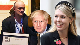 """""""Princezna bláznivka"""": Tak nepěknou přezdívku si vysloužila snoubenka britského premiéra od jeho exporadce Cummingse"""