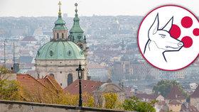 Praha je stejně jako celá ČR na čtvrtém stupni protiepidemické pohotovosti PES