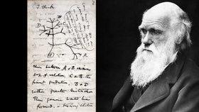Britská Cambridgeská univerzita ohlásila, že z její knihovny zmizely dva cenné deníky vědce Charlese Darwina (24.11.2020)