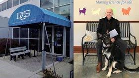 Zvolený prezident Joe Biden musel po hře se psem navštívit ortopeda.