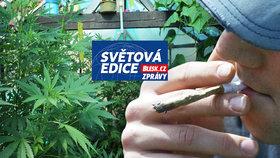 Pro třetinu Američanů je marihuana legální.
