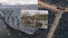 """""""Je před námi děsivá budoucnost,"""" varují vědci. Bijí na poplach kvůli ekologickým hrozbám."""