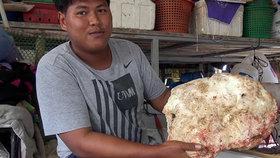 Další thajský rybář našel cennou vorvaní ambru, zřejmě na ní trhne miliony.