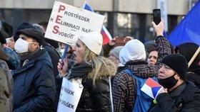 """Na Václavském náměstí v Praze se konala 31. 1. 2021 demonstrace v rámci akce """"Jsme lidi, nás nevypnete"""". Přišly stovky lidí."""