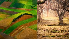 Zemědělství nemusí být jen kilometry dlouhé lány.