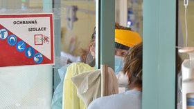 Boj s koronavirem v přetížené sokolovské nemocnici (2.3.2021)