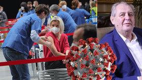 Prezident Miloš Zeman očekává konec pandemie v září, uvedl pro Blesk.cz