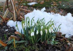 Jaro už se blíží (Ilustrační foto)
