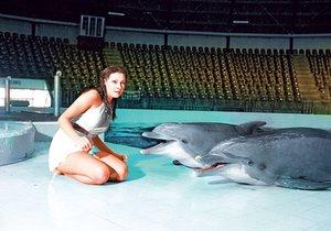 Na začátku byli delfíni milí a hraví, pak ale zaútočili!