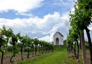 Krásu a atmosféru jižní Moravy si okamžitě zamilujete.