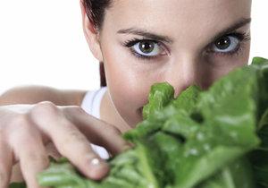 Doma vypěstovaná zelenina je nejen chutnější, ale i výživnější