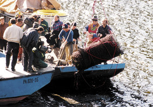 Přesně před 20 lety vytáhli potápěči z vody sud s obětí orlických vražd