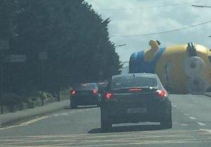 Mimoň se přiřítil na silnici v Dublinu.