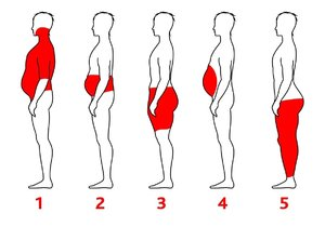 Podle místa, kde se vám nejvíce ukládá tuk, zvolte strategii hubnutí.