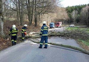 Hasiči zasahovali nejčastěji u stromů, které spadly na silnici.