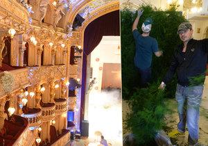 Přípravy na Ples v Opeře jsou náročné.