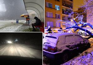 V Česku sněží. V Praze spadl strom na auto, zrušili zápas Sparty s Duklou a v Brandýse část večera nesvítilo ani pouliční osvětlení.