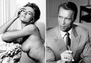 Unikátní fotografie celebrit z dílny fotografa Johna Stoddarta jdou do dražby.