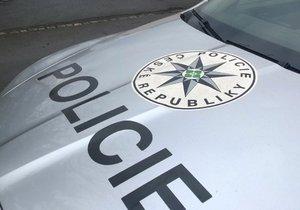 Policisté vyšetřovali za první pololetí v Praze sedm vražd. (ilustrační foto)