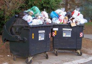 Odpad z popelnic poputuje do spaloven, varuje hnutí DUHA.