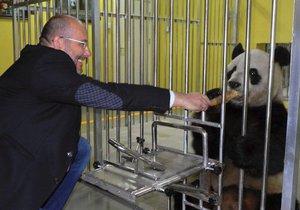Chutný bambus z ruky ředitele pražské zoo Miroslava Bobka