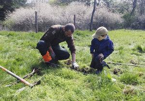 Pražští lesníci mají na jaře napilno. Dokončili jarní část výsadby nových lesů.