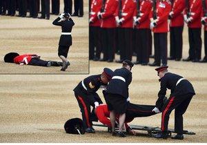 Člen britské královské gardy omdlel při prohlídce.