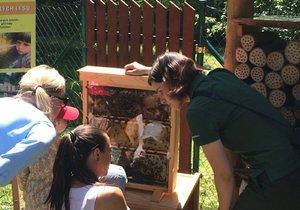 Organizátoři přednášeli o životě včel.