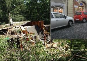 Silná bouřka zlila Šumavu, Prahu, Českou Lípu, festival i skauty. Sledujte radar.