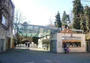 Pražská zoo si brousí drápky na zahájení další sezony: Kdo si ho nenechá ujít?