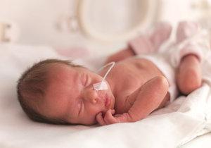 V orlickoústeckém babyboxu našli novorozenou holčičku! Martinka byla zabalená do ručníku