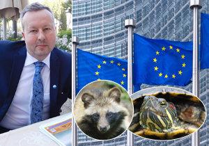 Ministerstvo životního prostředí nařízení EU proti invazivním zvířatům podporuje a chce ho rozšířit.