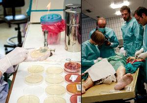 Patolog jako patolog? Omyl. Jedni mají moderní centrum, druzí odcházejí za hranice. (Ilustrační foto)