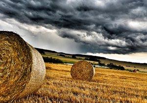 K dešti se v neděli mohou přidat i bouřky