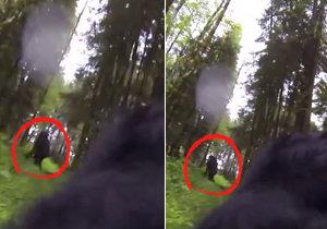 Bigfoota se podařilo natočit v oregonském lese.