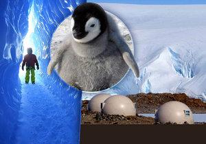 Dovolená na Antarktidě