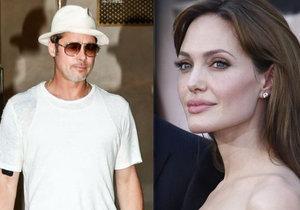 Brada Pitta čeká právní bitva s manželkou Angelinou Jolie.