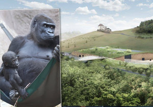 Vizualizace nového pavilonu goril v Zoo Praha: Vznikne nakonec v této podobě?