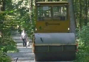 Cesty v uhříněveské Oboře jsou konečně opraveny. Vysázeno je také 10 000 nových stromků