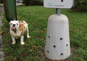 Pejskové si psího pisoáru na Pankráci zatím příliš nevšímají.