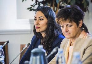 Jak integrace na lokální úrovni funguje, o roli obcí a především svých osobních zkušenostech hovořili v Poslanecké sněmovně nejen zástupci komunální politiky nebo odborníci na integraci, ale i někdejší uprchlice z Afghánistánu a Barmy.