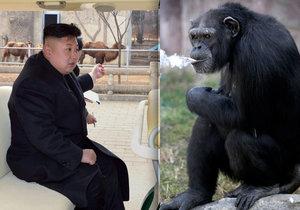 Zoologická zahrada v Pchjongjangu přitahuje tisíce návštěvníků každý den, na její rekonstrukci dohlížel i Kim Čong-un.