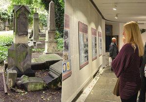 Výstavu o Malostranském hřbitově můžete navštívit v Galerii Portheimka až do poloviny listopadu.