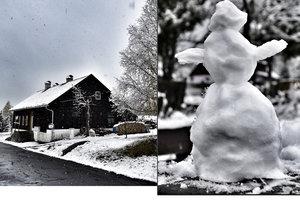 Česko s bílou peřinou: Na Šumavě napadlo pět centimetrů sněhu.