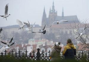 Navštíví Prahu podzim se vším všudy? Příští týden se v metropoli výrazně ochladí